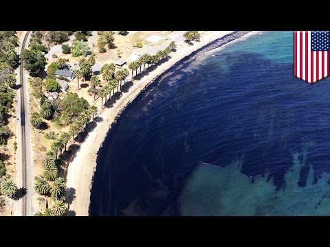 Santa Barbara oil spill: 21,000 gallon, 4-mile long slick covers California coast - TomoNews