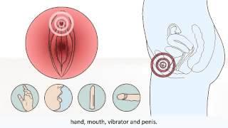 Физический процесс возбуждения женщины