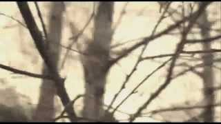 Twilight Coda - Steven Wilson - Insurgentes