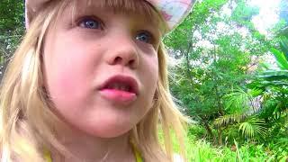 Урок ботаники для малышей в Королевском Ботаническом саду | СЕМЕЙНАЯ ШКОЛА МАСТЕРА ГО