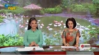 Tin tức | Tin tức 24h mới nhất hôm nay 21/02/2018