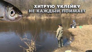 Какую рыбу можно поймать за 2 часа рыбалки на реке Кудьма Рыбалка на поплавок около дома