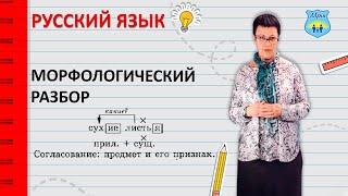 видео Морфологический разбор слова