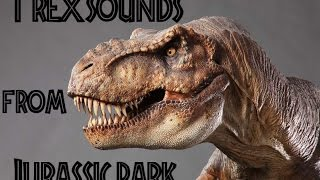The Many sounds of The T-Rex from Jurassic Park