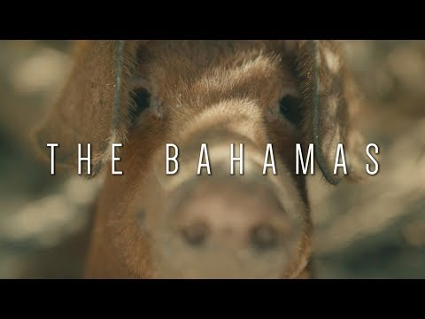 The Bahamas - Travel Film