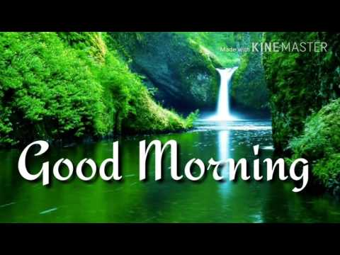 Good morning beautiful video for whattsapp 2017 india
