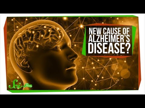 We Might Be Totally Wrong About Alzheimer's