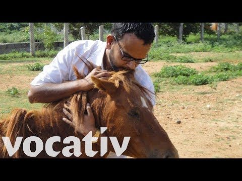Real-Life Indian Horse Whisperer Rescues Abandoned And Injured Horses