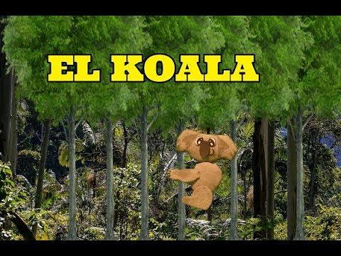 CANCION DEL KOALA INFANTIL- LOS TITIS MOTIVACION INFANTIL