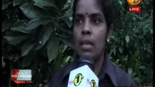 News 1st Prime time 8PM  Shakthi TV news 25th october 2014