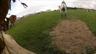 horse-jump2-wmv