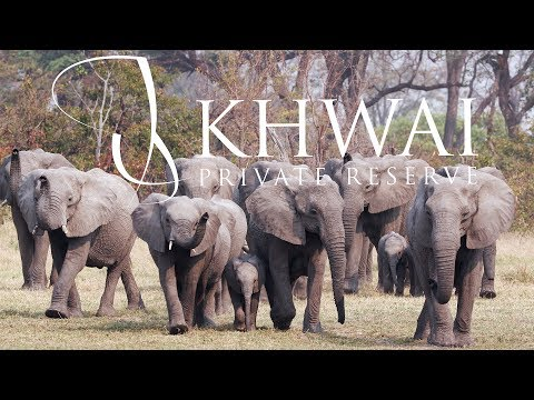 Khwai Private Reserve - Botswana. By drone and by land.