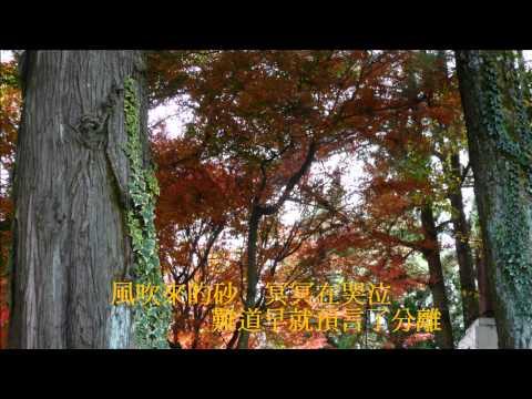 音樂磁場-哭砂, 2013 松盧楓紅,Taiwan