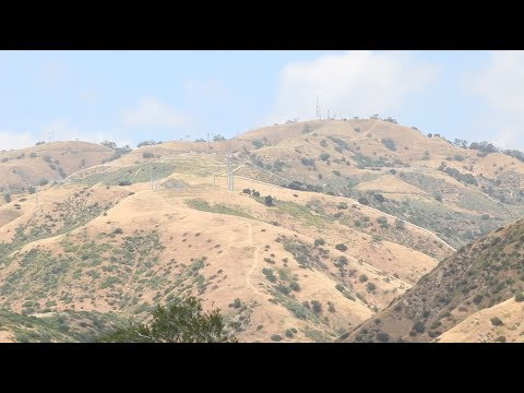 The Aliso Canyon Blowout