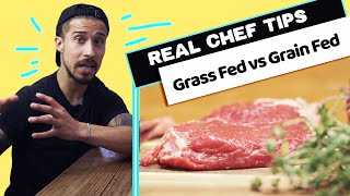 "The Reason ""Grass Fed"" is Better For ALL OF US"