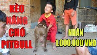 🔥TXT - CHỒN NƯỚNG | KÈO NÂNG CHÓ PITBULL VỚI ANH LÙN, NHẤT LÊN NỔI NHẬN 1.000.000 VND