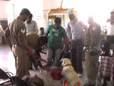 RPF Railway Police Checking with Dog Squad