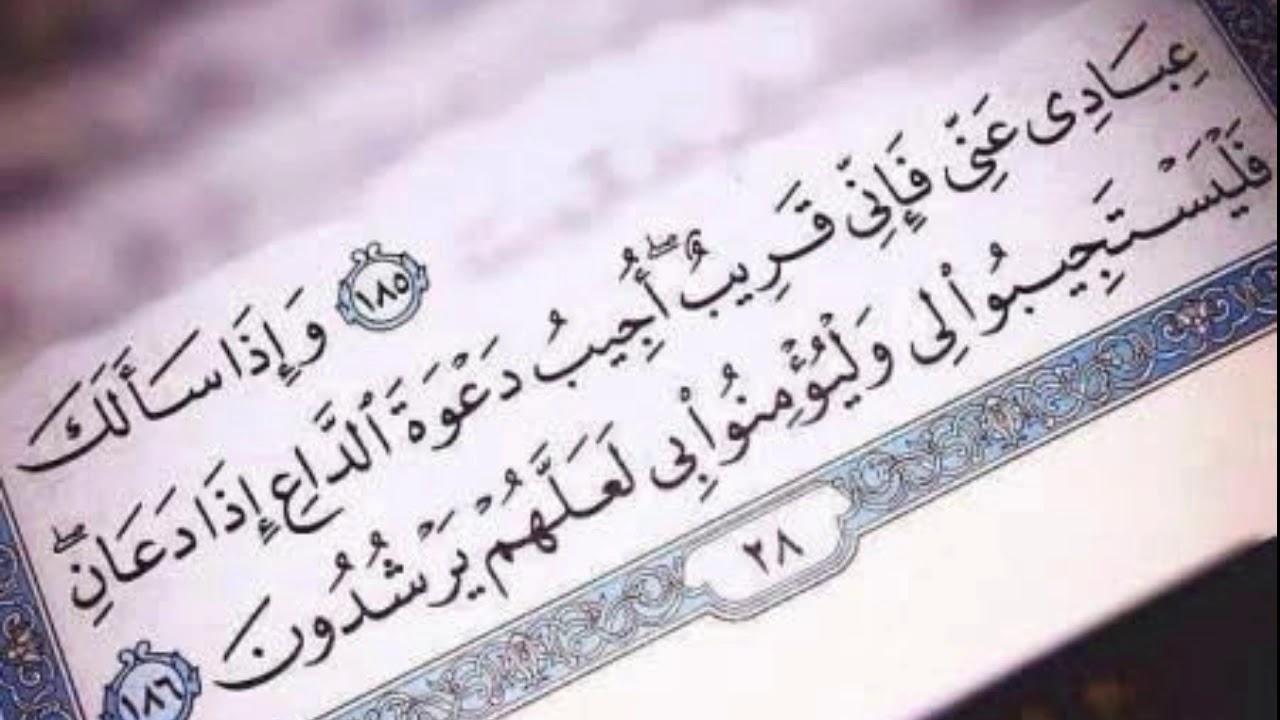حالات واتس دينية //ايات قرآنية قصيرة?//تلاوة خاشعة بصوت مشاري العفاسي??