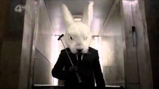 Le lapin blanc - senz - [tribecore]