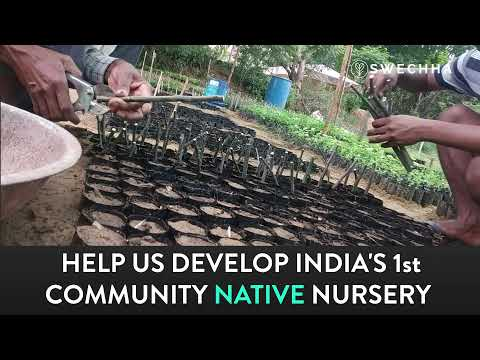 Help Us Build Our Native Nursery! - Campaign Film