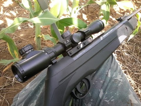 Caça de pombo #02 - CBC Montenegro F22 Standard 5.5mm