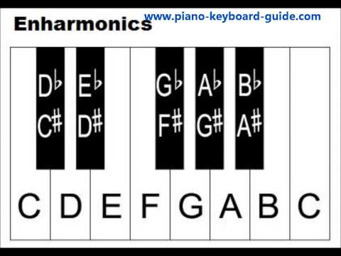 Learn Piano Keys And Notes – Piano Keyboard Diagrams