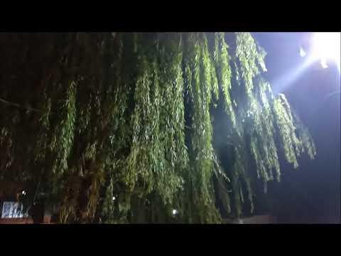Humrahi mere humrahi - A forgotten gem of a Sanjay Dutt Love song - Lata Mangeshkar & Suresh Wadekar