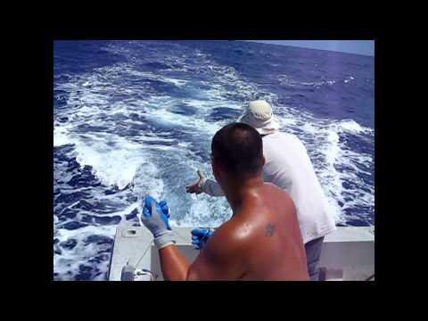 WaayCool Handlines in Action - Offshore Handline Fishing at Wake Island