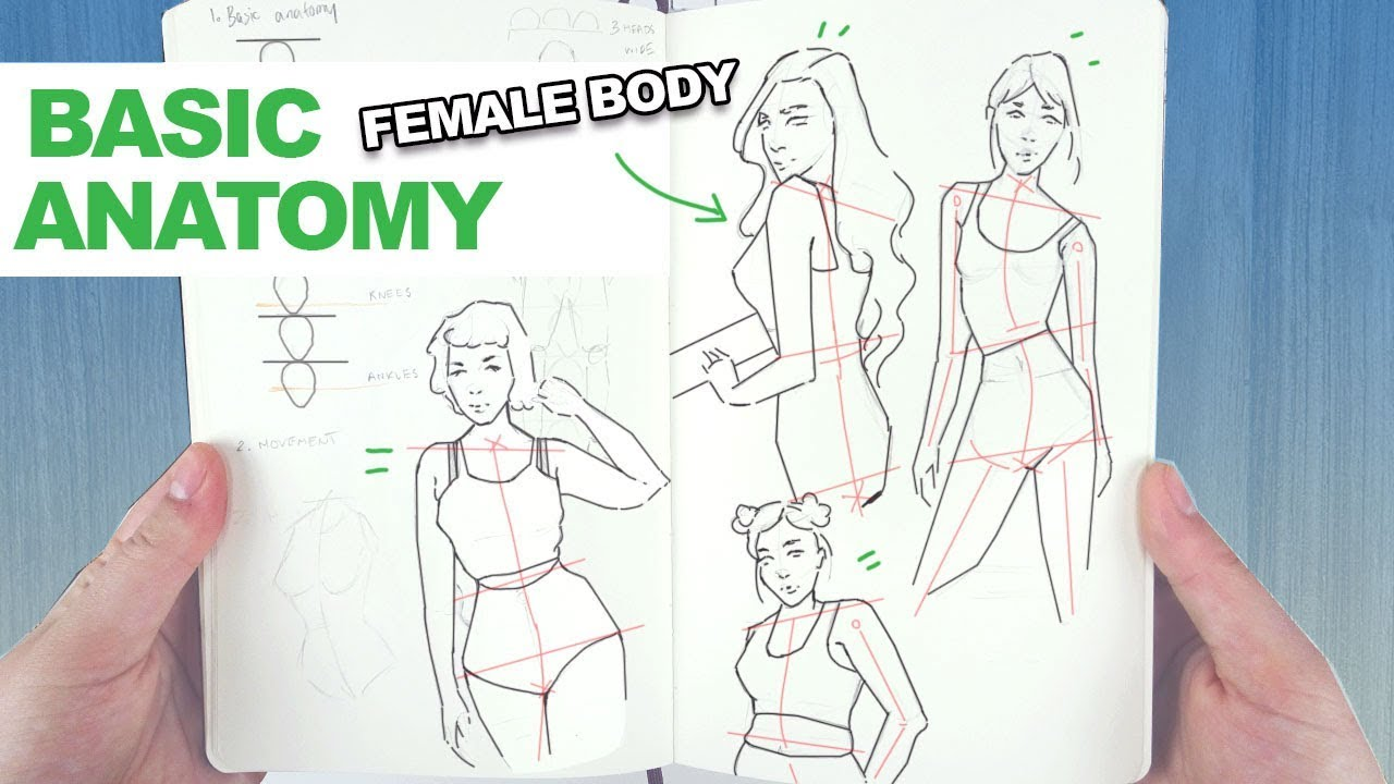 How To Draw The Female Body My Easy Technique For Basic Human
