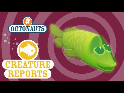 Octonauts: Creature Reports - Spookfish