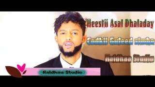 Guuleed Simba HEESTII ASAL DHALADAAY HALDHAA STUDIO