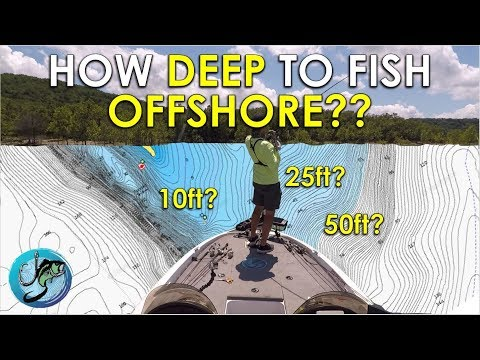 Easy Guide: How Deep Bass Live Offshore   Thermocline Explained