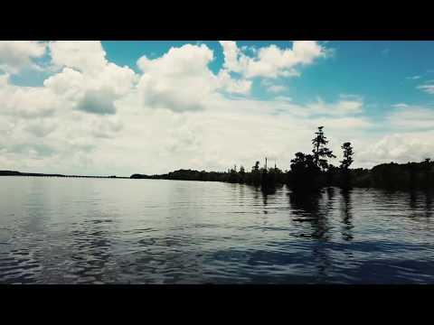 Sparkleberry Swamp, Packs, And Lowfalls