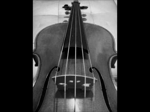 F.Schubert - Arpeggione Sonata I mov./Raffaele Tiseo, 5 string violin