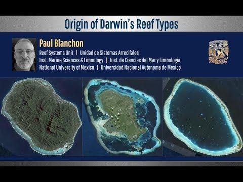 Origin of Darwin's Reef Types