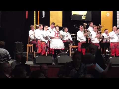 Ples Muzikantu Hodonin 2018  D H Sardicanka Part 1