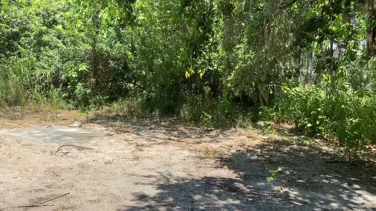 0.15 Acres - With Power and Paved Road! In Sarasota, Sarasota County FL