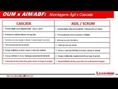 Oracle EBS Implementation - OUM X AIM / ABF (versão Português)