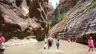 Roadtrip Vlogs: Zion National Park - The Narrows and Camping on the Beach?