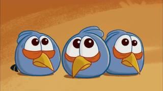 Angry Birds    Do As I Say   Funny Cartoon For Kids 2017