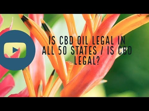 Is CBD Oil Legal in All 50 States?