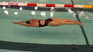 Video Turns - Underwater Dolphin download MP3, 3GP, MP4, WEBM, AVI, FLV Juli 2018