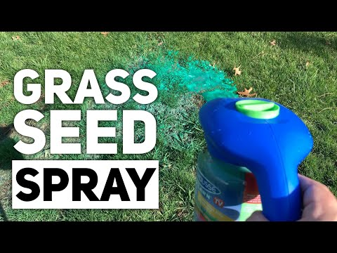 Spray Grass Seed With Hydro Mousse Liquid Lawn