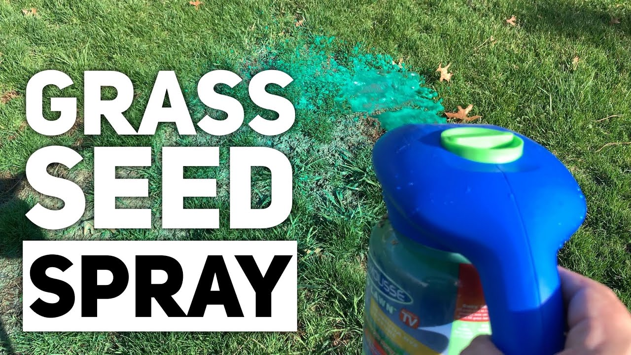 Spray Grass Seed With Hydro Mousse Liquid Lawn Youtube
