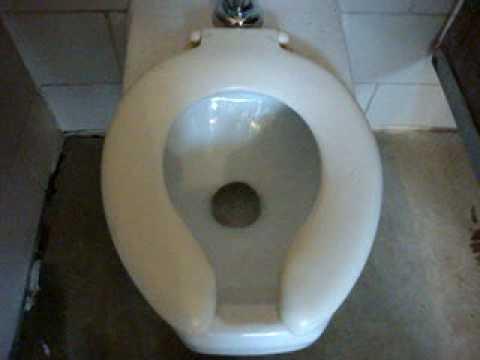 Most Violent Toilet Flush Ever Doovi