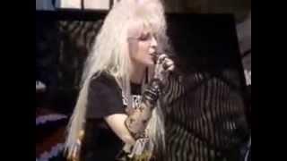vixen live in daytona beach fl 1989