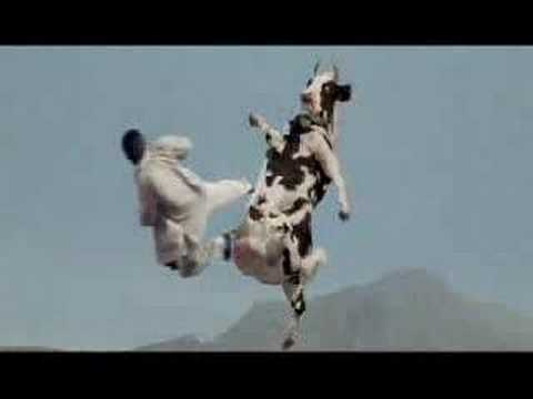 Kung Pow - There Goes my Hero