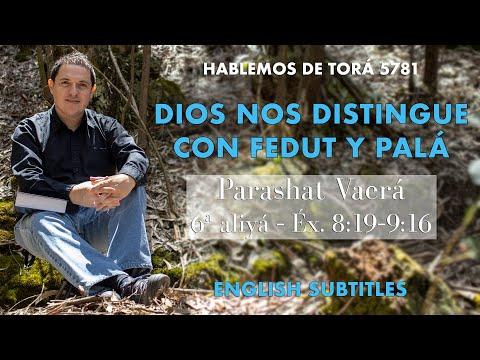 Vaerá - Dios nos distingue con Fedut y Palá / God make distinction on us with Fedut and Palah