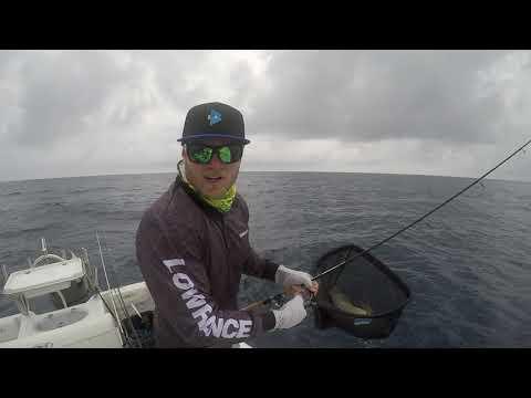 BCF - Brisbane Local Fishing Action