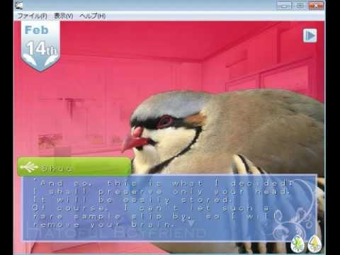 Let's Play Bird Dating Game -- Part 3